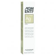 Pigments Ash Gold 8ml