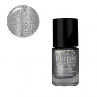 Purple Professional Nail Polish Fairy Dust N0120 10ml